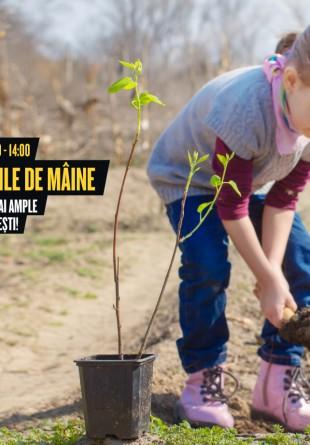 Vino și tu la cea mai amplă campanie de plantat copaci din Ploiești!