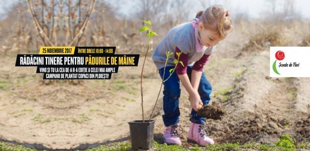 slider-plantare-copaci
